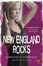 New England Rocks by Christina Courtenay