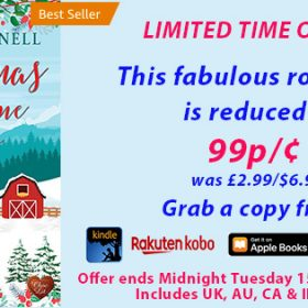 Limited Time Deal for Christmas at Moonshine Hollow