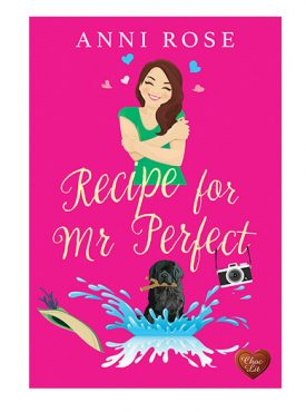 Recipe for Mr Perfect by Anni Rose